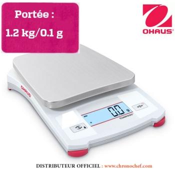 BALANCE COMPASS PORTABLE - Portée 1.2 kg