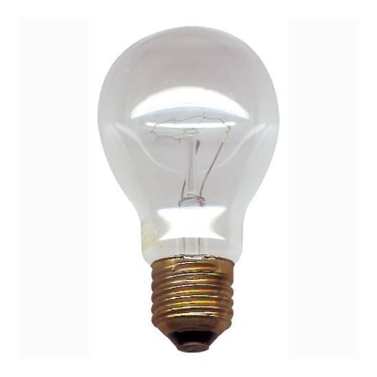 LAMPE-AMPOULE-FOUR-HAUTE TEMPERATURE 220V-75W